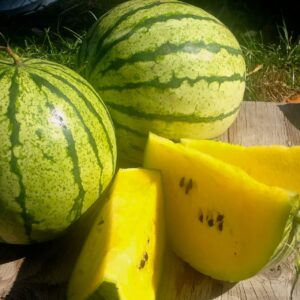 هندوانه 2